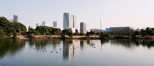 trip travel lake nature water animals japan buildings reflections landscape tokyo pond raw skyscrapers fav50 grain metropolis 219 kodakportra800 fav10 fav25 vsco nikonflickraward afsdxvrzoomnikkor1855mmf3556g vscofilm