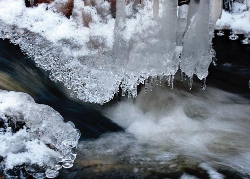 winter canada ice canon fredericton newbrunswick maritime nouveaubrunswick brook maritimes atlanticcanada unb universityofnewbrunswick canonxti unbwoodlot