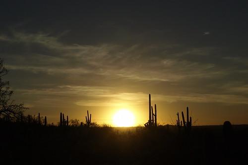 sunset saguaronationalparkrinconmountaineastdistrict saguaronationalparkeast saguaronationalparkrinconmountaindistrict saguaronationalpark garwoodtrail garwoodtrail20141116 rinconmountains rincons