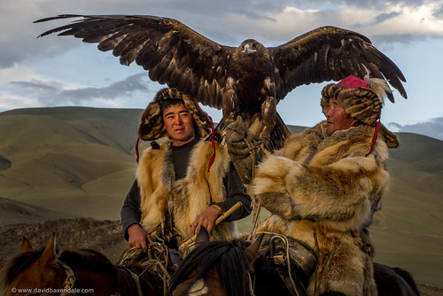 Golden Eagle Hunters of Mongolia | by www.davidbaxendale.com