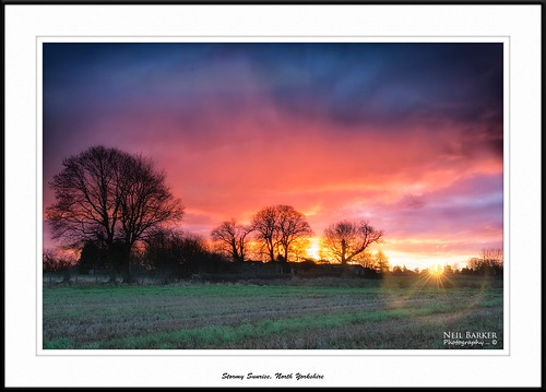 morning trees sun sunrise landscape nikon redsky northyorkshire scruton neilbarkerphotography