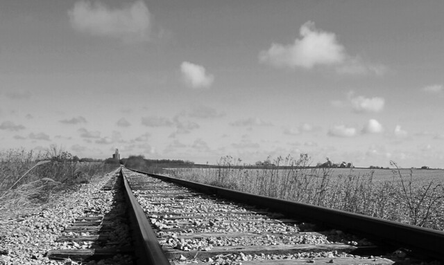 Day 318 - the track to Cropsey (in explore)