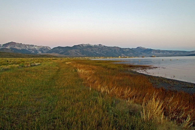 Original version of Anita in far background walking through Mono Lake grasses on a cold cold morning 110926-063918 C4Ae