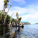 05 Viajefilos en Panama. Isla Carrenero 10