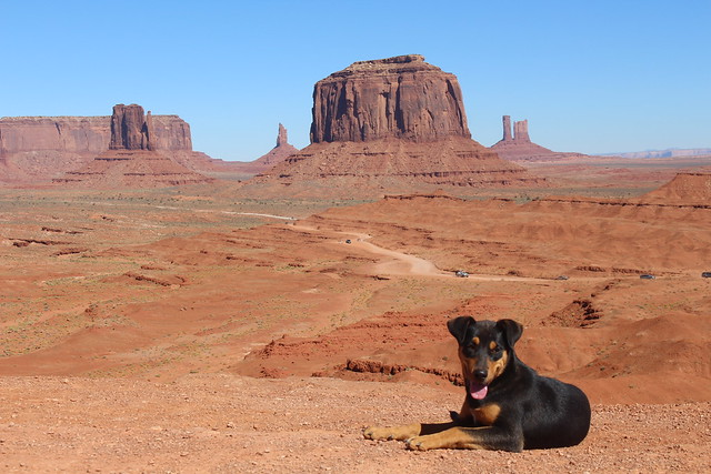 A friend I met in Monument Valley