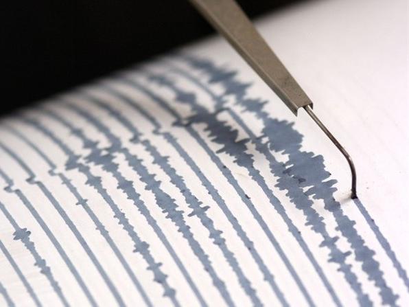 sismografo-terremoto-scossa-scosse_650x4471