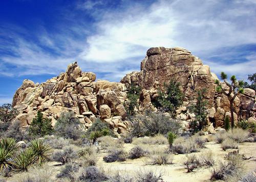 Desert Sky, Joshua Tree NP 4-13   by inkknife_2000 (10.5 million + views)