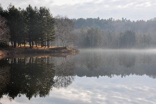 Misty Morning | by Ryan Paulsen Photography