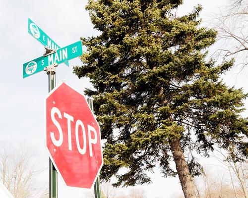 tree nikon downtown michigan signal streetview 2010 d300 vermontville eatoncounty