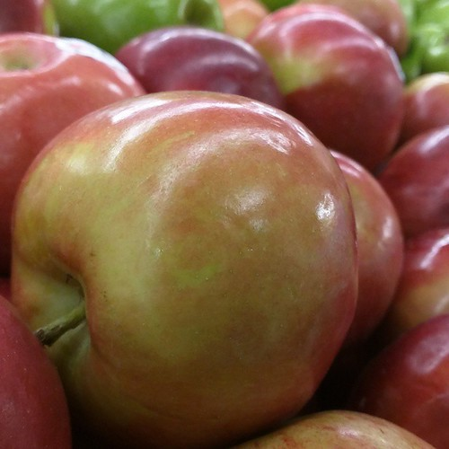 Lush fruit.   by jfingas