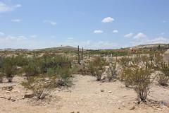 Terlingua Cemetery 3