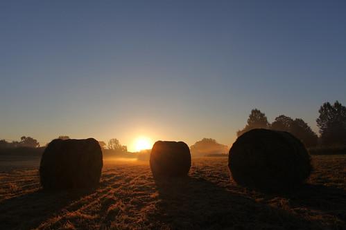 sunrise dawn farming straw bales