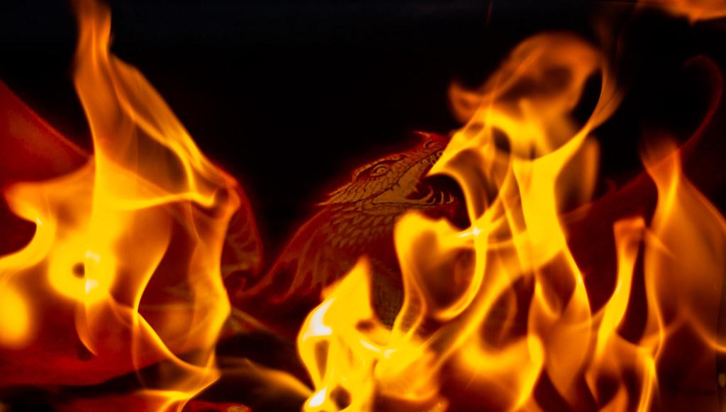 Phoenix in barbecue #FlickrFriday #Phoenix. den beauvais