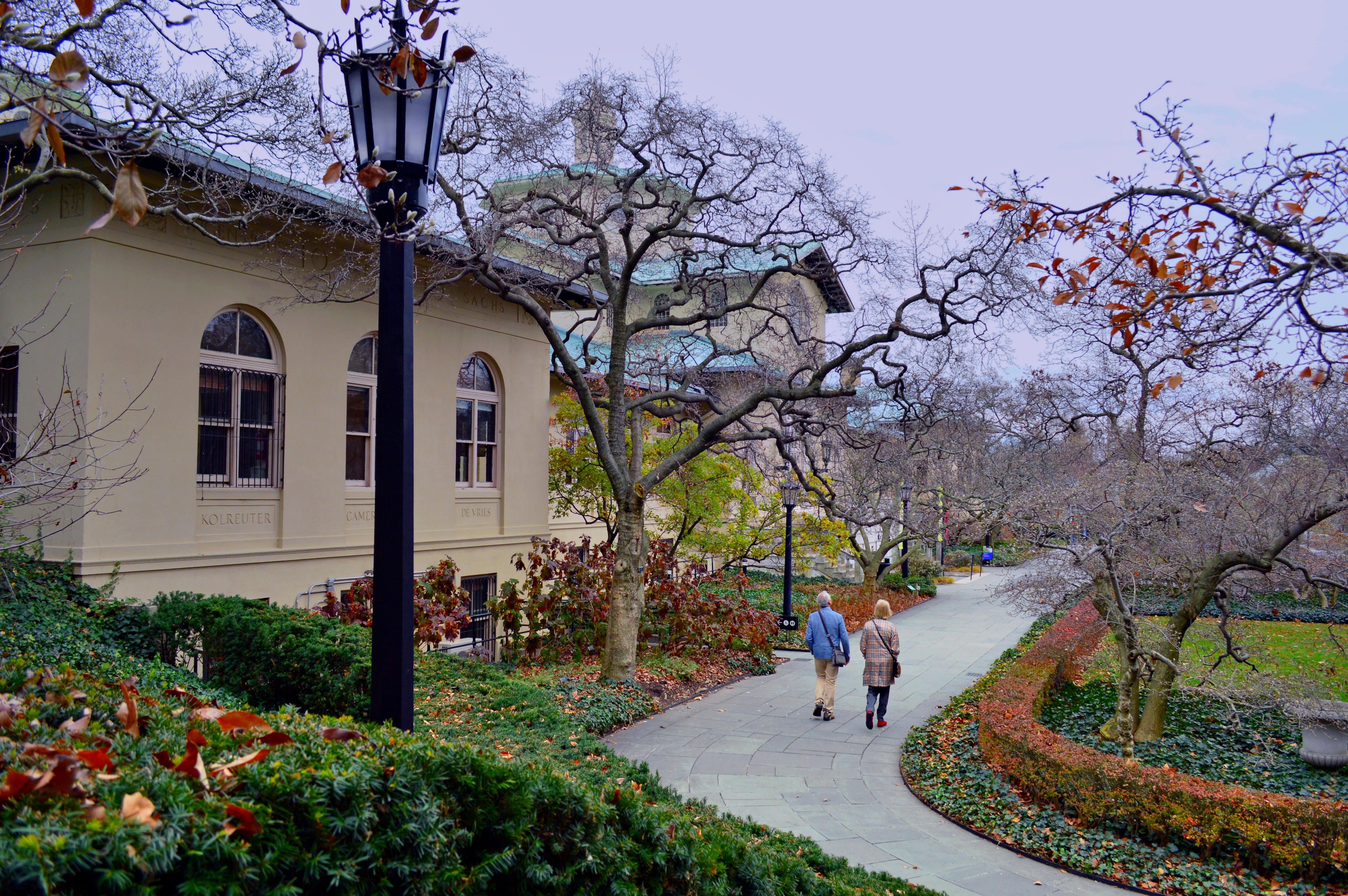 Brooklyn Botanic Gardens.