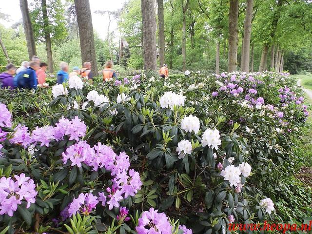 2016-05-18    St'Michielsgestel  26 Km  (103)