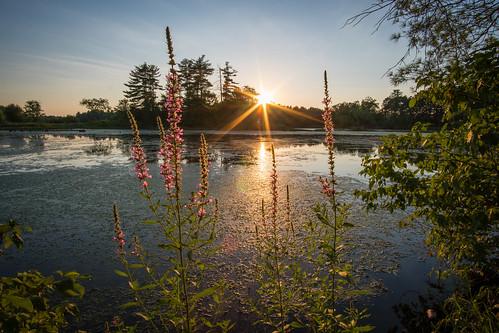 minefallspark nashua newhampshire evening scenic summer sunset water sun
