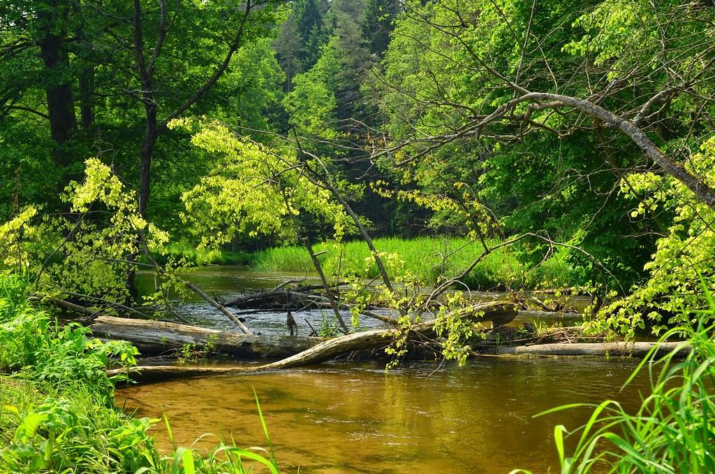 Rospuda river, Masuria by bike