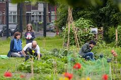 Griftpark Utrecht. 001