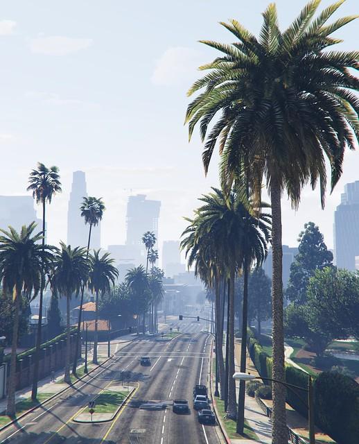 Palm Row avenue