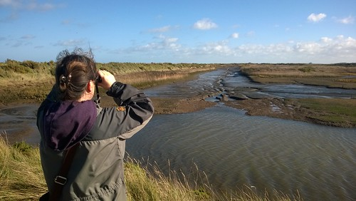 Birdwatching at Titchwell | by dumbledad