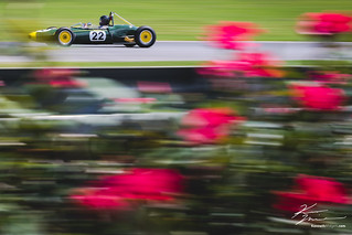 Roses are red, Lotus are green and yellow. | by Kenneth Midgett