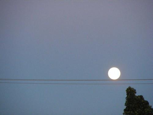 lune moon pleinelune fullmoon ciel sky impatience arbre tree funambule tightropewalker fabuleuse paysage landscape