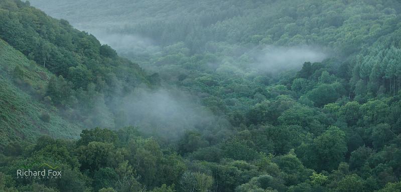 Diffusing Valley