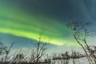 Auroras Boreales en Noruega-53 | by luisete
