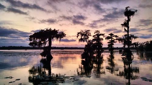 sunset sky lake reflection water clouds louisiana peaceful swamp cypress natureconservancy lakemartin breauxbridge