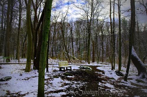 thanksgiving walks parks benches hbm frptlady winter2014 kmsalvatore
