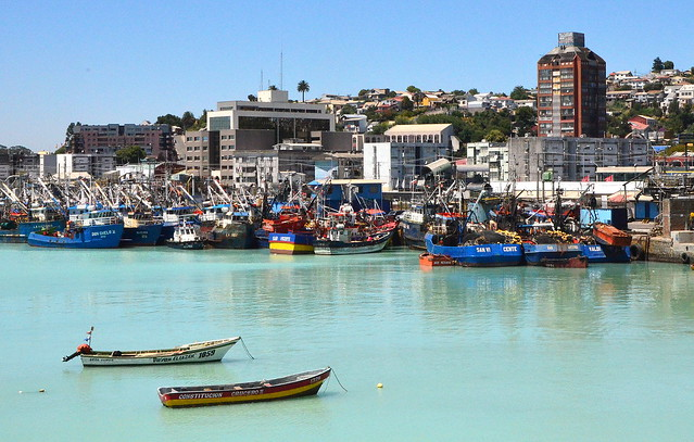 Talcahuano y sus aguas desoxigenadas