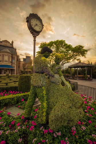 epcot topiary disney cinderella wdw waltdisneyworld topiaries epcotflowerandgardenfestival nikon1424 nikond610