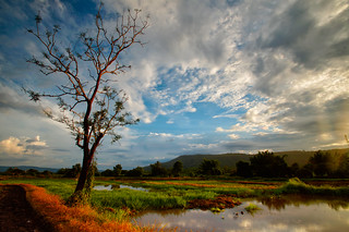 rural Thailand | by Alex Dansai