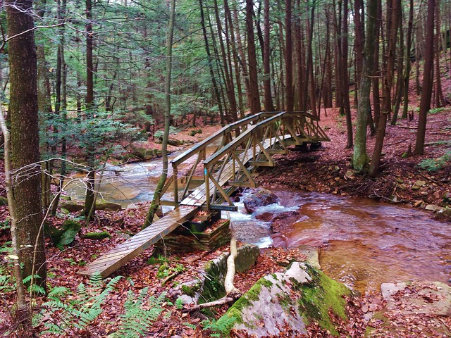 Dead Crow bridge along the NCT North Country Trail in northern Buter County PA