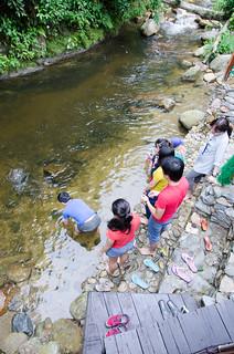 Tanah Aina Farrah Soraya Eco Tourism Resort at Raub, Pahang | by huislaw