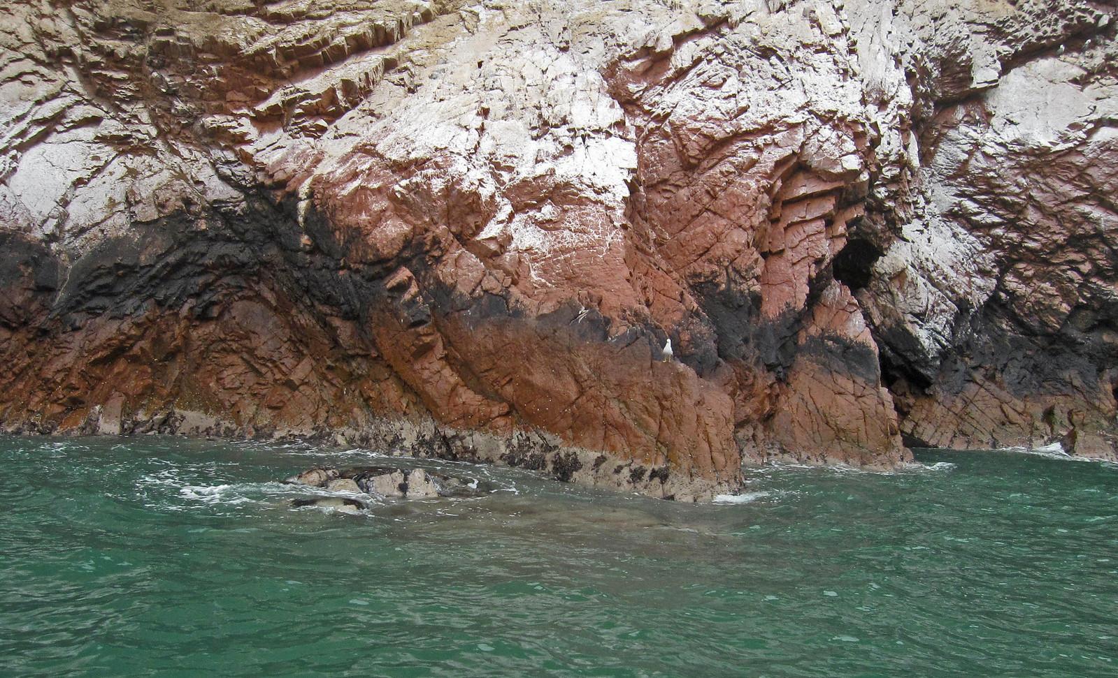 Islas Ballestas 54