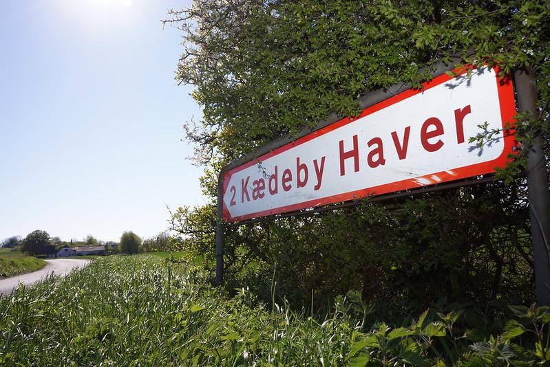 Kaedeby-Haver-maj-2016 (4)