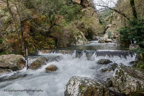 tree portugal landscape stones cascade leiria fragasssimão figueiródosvinhos luisascenso bluringwater