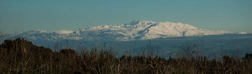 snow israel ישראל golanheights mthermon mounthermon שלג מושלג רמתהגולן הרחרמון david55king