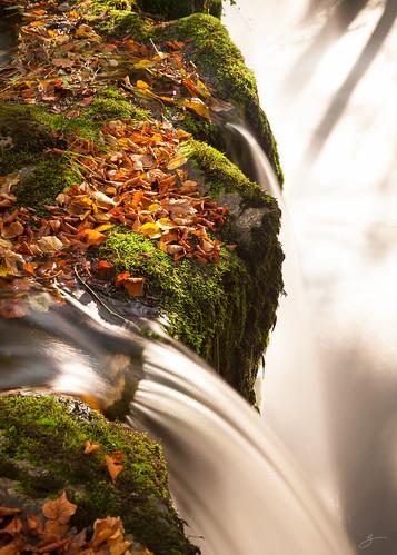 uk autumn water canon landscape waterfall leaf gower breconbeacon 5dmarkii sgwdddwli