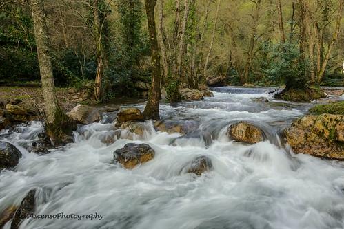 tree portugal water stone landscape cascade leiria fragasssimão figueiródosvinhos luisascenso