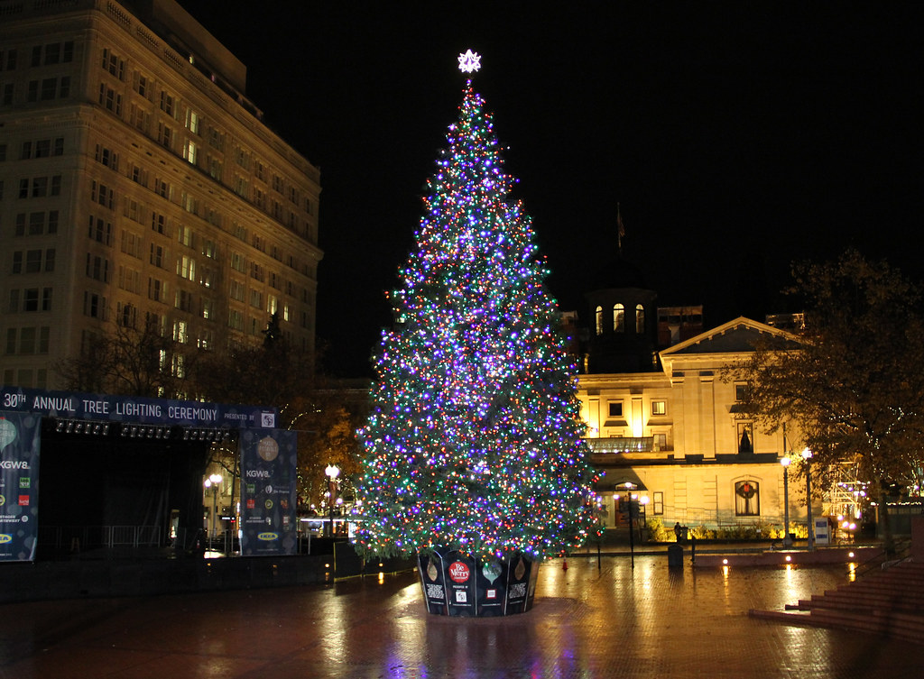 Portland Christmas Tree.Christmas Tree Pioneer Place Downtown Portland Multnoma
