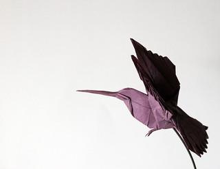humming bird | by paper folding artist redpaper