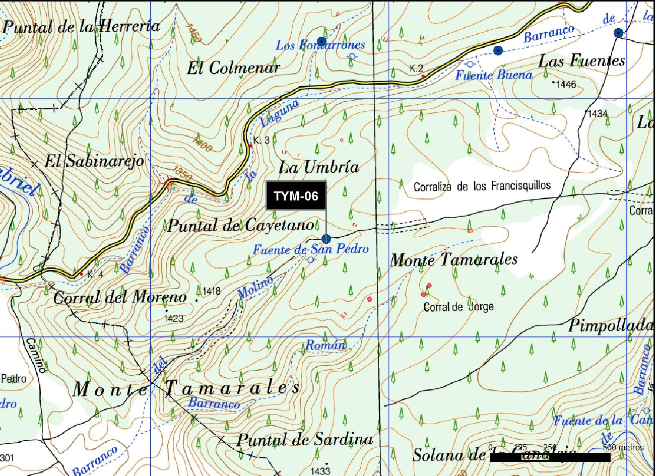 TYM_06_M.V.LOZANO_SAN PEDRO_MAP.TOPO 2