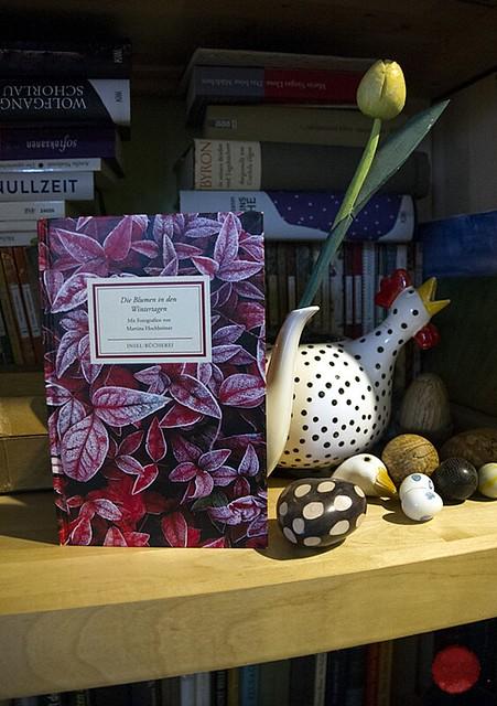 Insel-Bücherei-Überraschung
