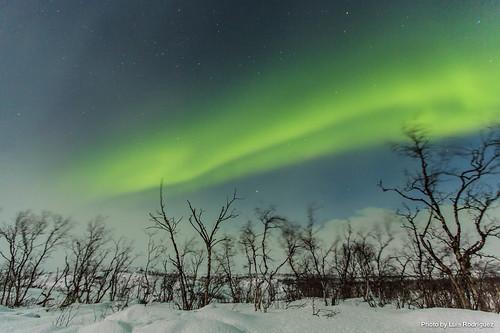 Auroras Boreales en Noruega-48 | by luisete