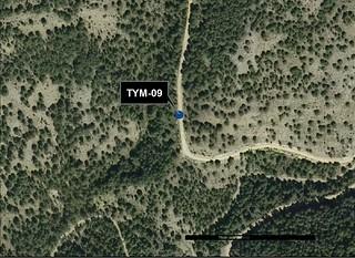 TYM_09_M.V.LOZANO_CANALEJA_ORTO 1