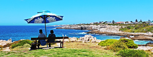 whalewatchers hermanus sea ocean view westerncape bench