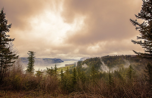 columbiarivergorge chanticleer point chanticleerpoint fog river crownpoint trees onone explore