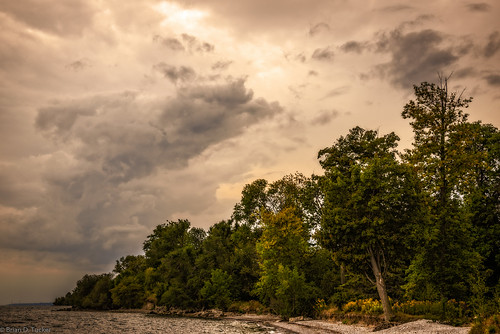 trees storm beach water clouds waterfront september shore ajax lakeontario 2015 d610 briandtucker